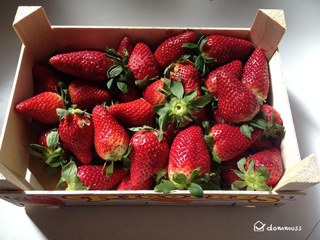 caja fresas