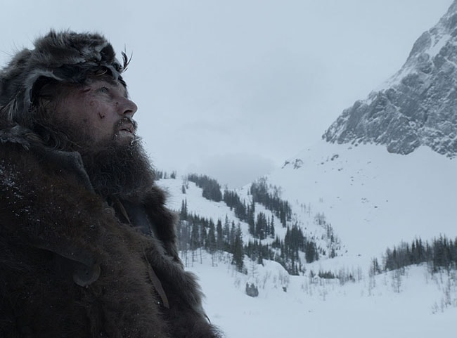 El Renacido. Los Oscars 2016. Lista de películas para ver